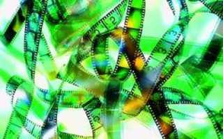 Фестиваль экологических фильмов в Москве