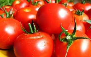 «УГМК-Агро» порадует уральцев ранними помидорами