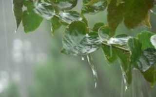 В Омск придет жаркая погода с грозами
