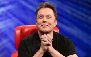 Илон Маск пообещал новый завод Tesla с бабочками и рыбами