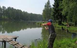Платная рыбалка в Подмосковье