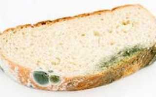 Треть пищи, производимой во всем мире, люди выкидывают