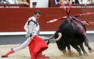 В Испании прощаются с традиционной корридой