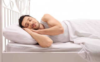 Как медведи или сурки, люди могут впадать в спячку