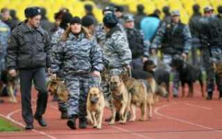 Статья Более 3 тысяч полицейских обеспечат порядок на матче «Спартак»–»Динамо» в Москве