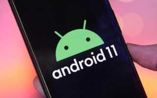 Google проговорилась о дате выхода Android 11
