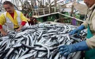 Поставки рыбы на Украину в последнее время стали сокращаться