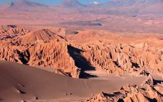 В пустыне жизнь бьет ключом