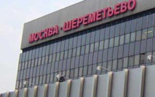 Владельцы коттеджей против строительства взлетной полосы в Шереметьево