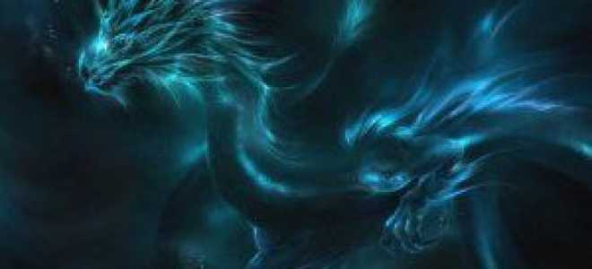 В Новый 2012 год — верхом на черном водяном Драконе