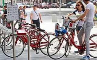 Пункты проката для петербургских любителей велосипедов