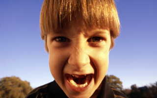 Откуда берется агрессия у детей?