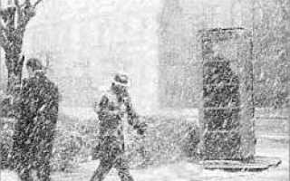 В Москву пришли снегопады