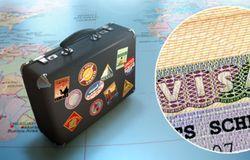 чемодан с визой